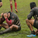Concussion in rugby